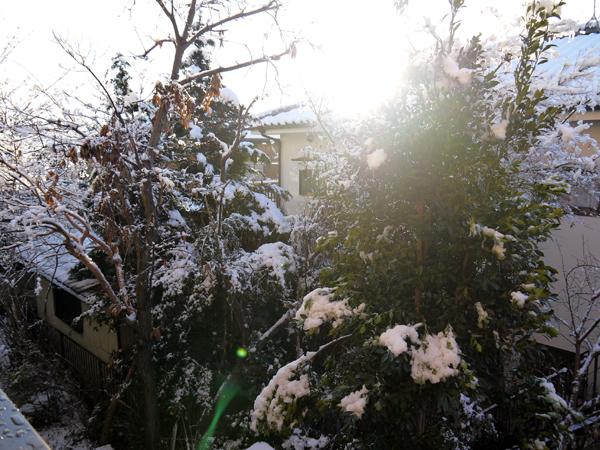 120124_yukigeshiki1.jpg