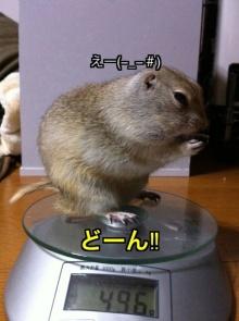 $りく-IMG_0781.jpg