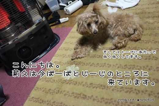 05-IMG_0461.jpg