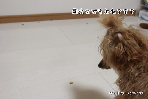 2-IMG_0222.jpg