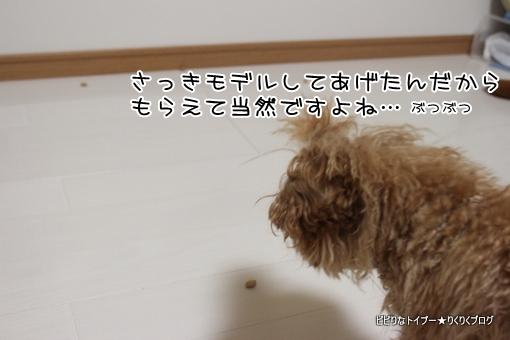 3-IMG_0223.jpg
