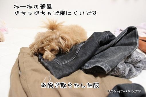 6-IMG_0038.jpg