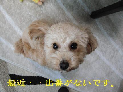 002_20111219195557.jpg