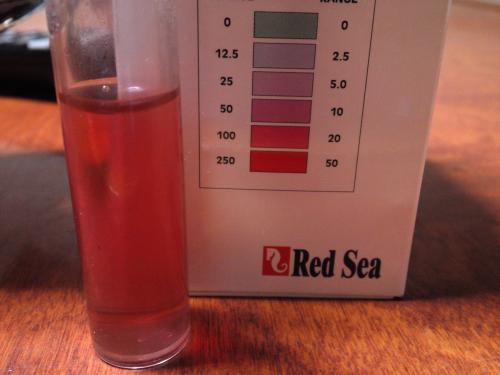 硝酸塩30キュ-ブ初日