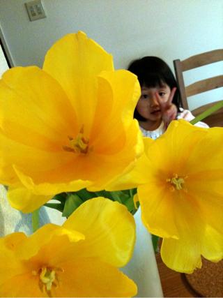 iphone_20110222120419.jpg