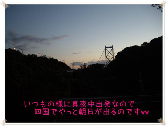 D-kame 001 (2)