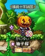 Maple130121_221915.jpg
