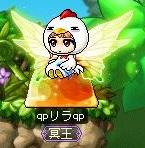 Maple140119_005654.jpg