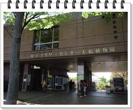 RIMG9838.jpg