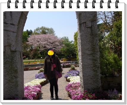 RIMG9846.jpg
