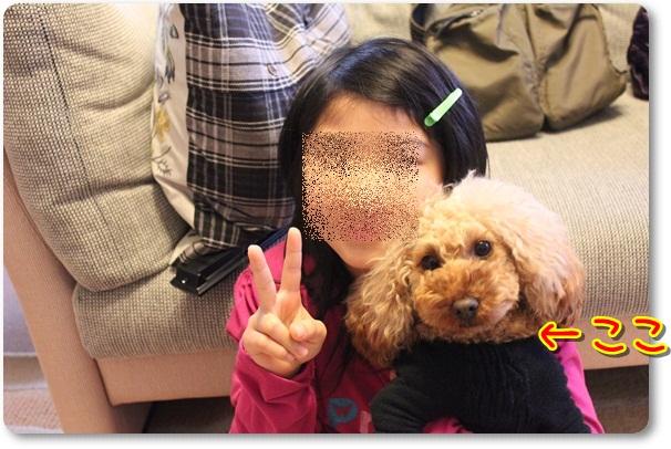 a3_20120115233237.jpg
