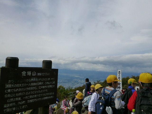 P1140616-r.jpg