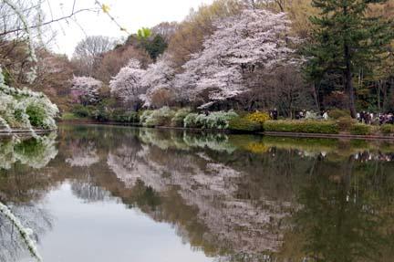 2010-04-04_24.jpg