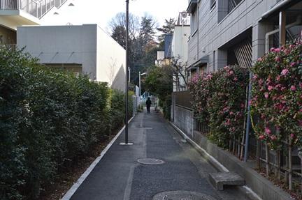 2013-12-30DSC_0100.jpg