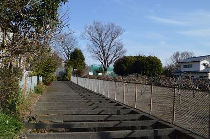 2014-01-04_112.jpg