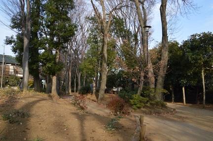 2014-01-04_125.jpg