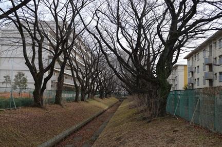 2014-01-04_6.jpg