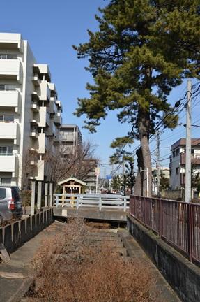 2014-01-04_82.jpg