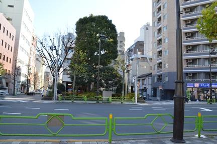 2014-01-11_h11.jpg