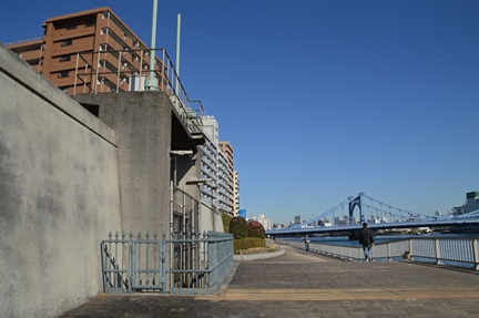 2014-01-11_h19.jpg