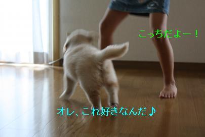 IMG_4613_convert_20100824132224.jpg