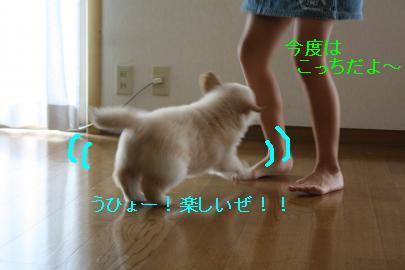 IMG_4614_convert_20100824132312.jpg