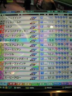 25戦目ドバイ