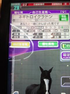 アイスペ牡馬