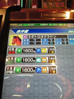 牝馬キターーーーー☆