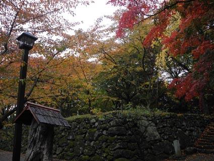 7懐古園の紅葉