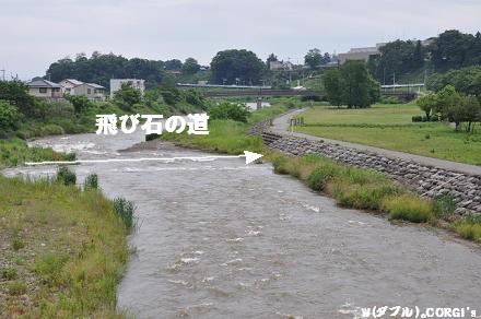2010061910.jpg