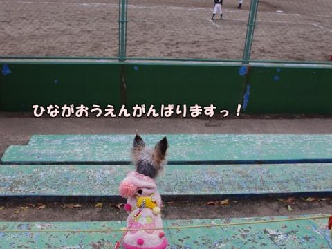 野球応援④