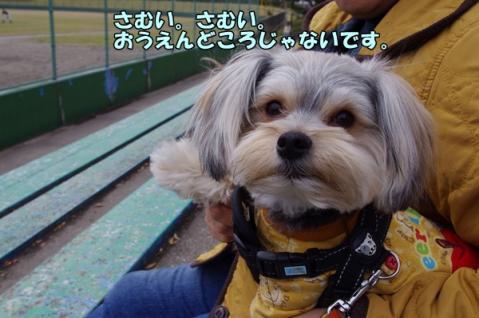 野球応援⑤