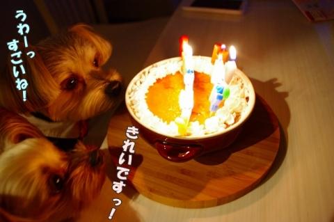 ロン5歳 誕生日会⑨