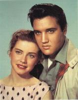 elvis-harrington.jpg