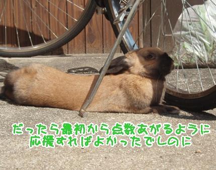 P3270669.jpg
