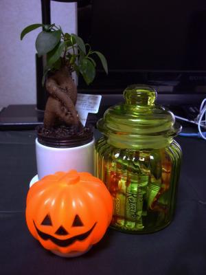 かぼちゃ_convert_20100922152120