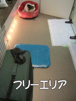 0911_3.jpg