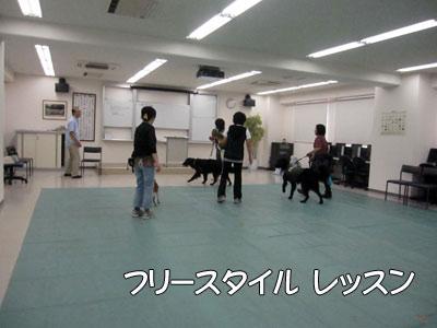 0911_D6.jpg