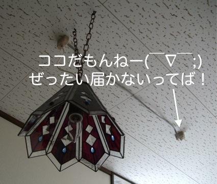 c-DSCF1010.jpg