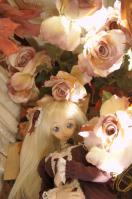 2011_1117S9S0049.jpg