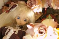 2011_1117S9S0050.jpg