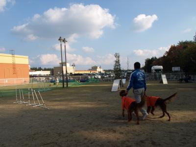 DOG DEPT(DOG GARGEN RESORT)@那須ガーデンアウトレット