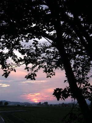 夕陽@白鳥浜