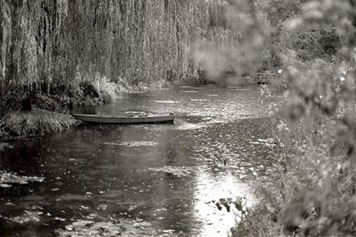 モネ睡蓮の池