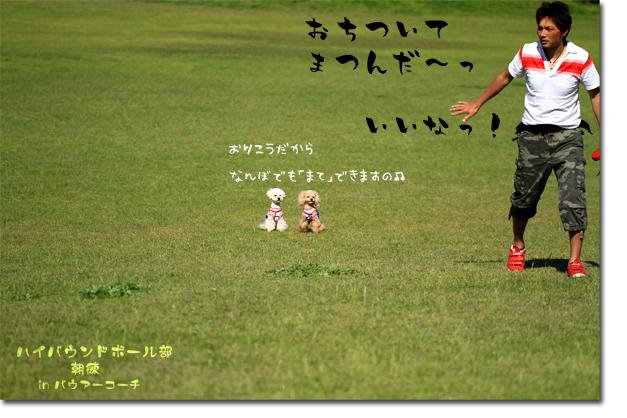 10_20100604100536.jpg