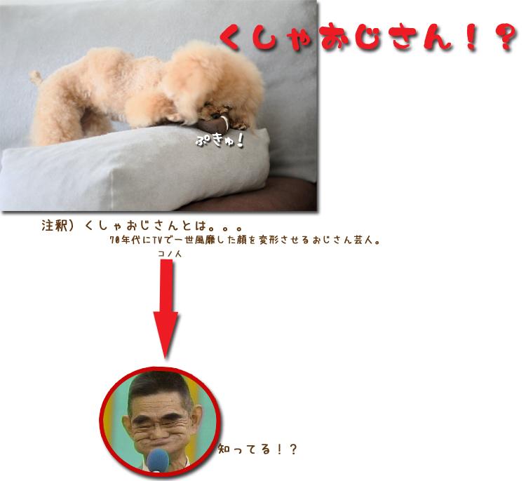 10_20100713102414.jpg