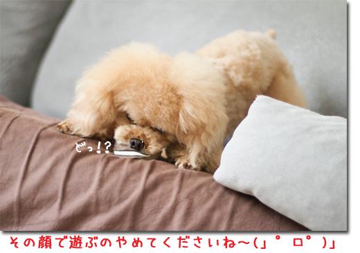 11_20100713104048.jpg
