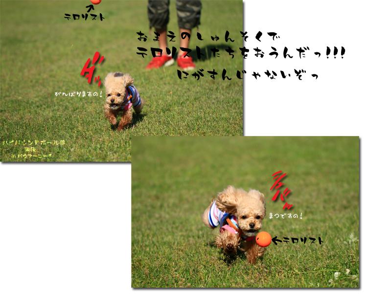 12_20100604103143.jpg
