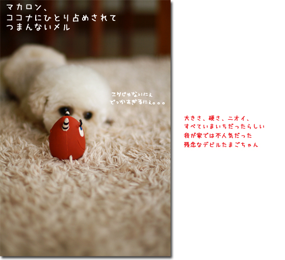 12_20100713104047.jpg